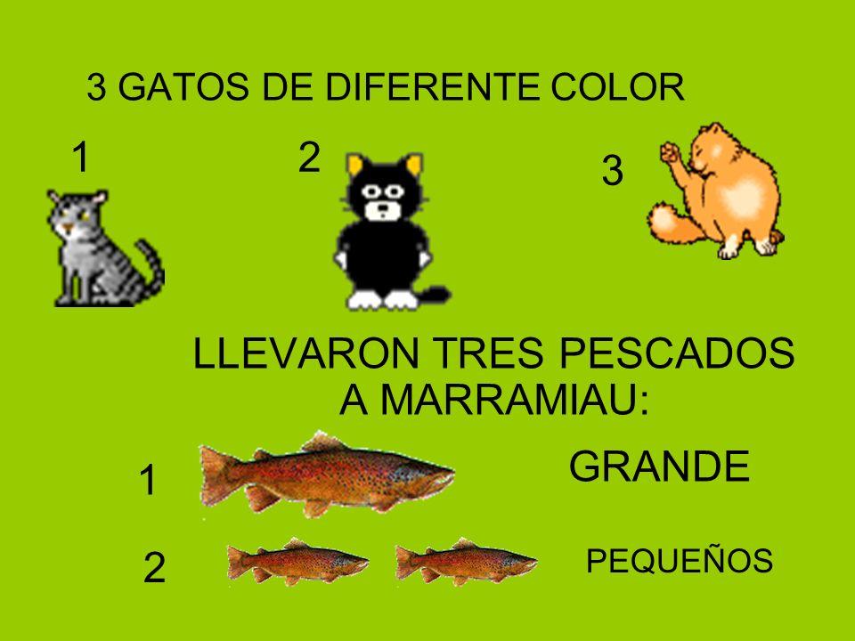 3 GATOS DE DIFERENTE COLOR LLEVARON TRES PESCADOS A MARRAMIAU: 1 2 3 1 2 GRANDE PEQUEÑOS