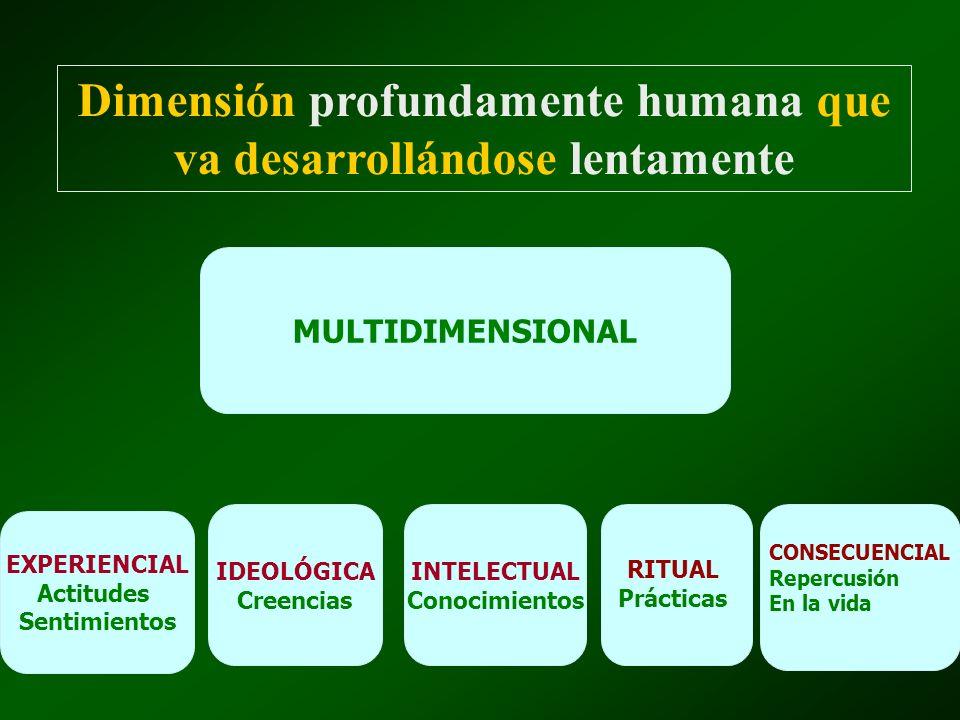 CADA DIMENSIÓN SE DESARROLLA GRADUAL EVOLUCIÓN DEL SENTIMIENTO RELIGIOSO SU DESARROLLO DEPENDE DE VARIOS FACTORES: -F.
