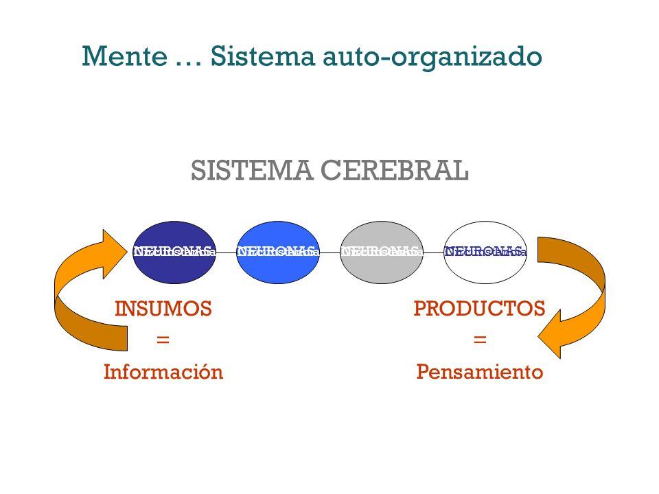 INSUMOS = Información PRODUCTOS = Pensamiento NEURONAS SISTEMA CEREBRAL Mente … Sistema auto-organizado Circunstancia