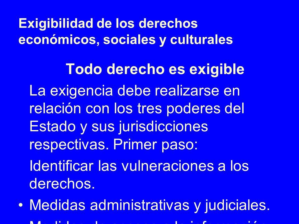 Exigibilidad de los derechos económicos, sociales y culturales Todo derecho es exigible La exigencia debe realizarse en relación con los tres poderes