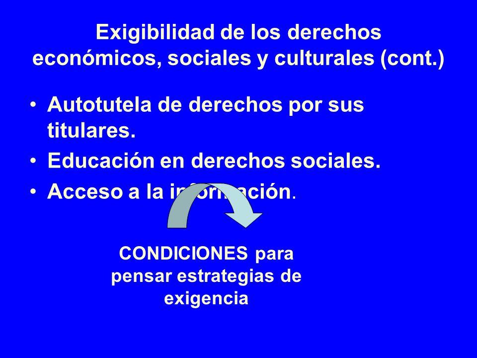 Exigibilidad de los derechos económicos, sociales y culturales (cont.) Autotutela de derechos por sus titulares. Educación en derechos sociales. Acces