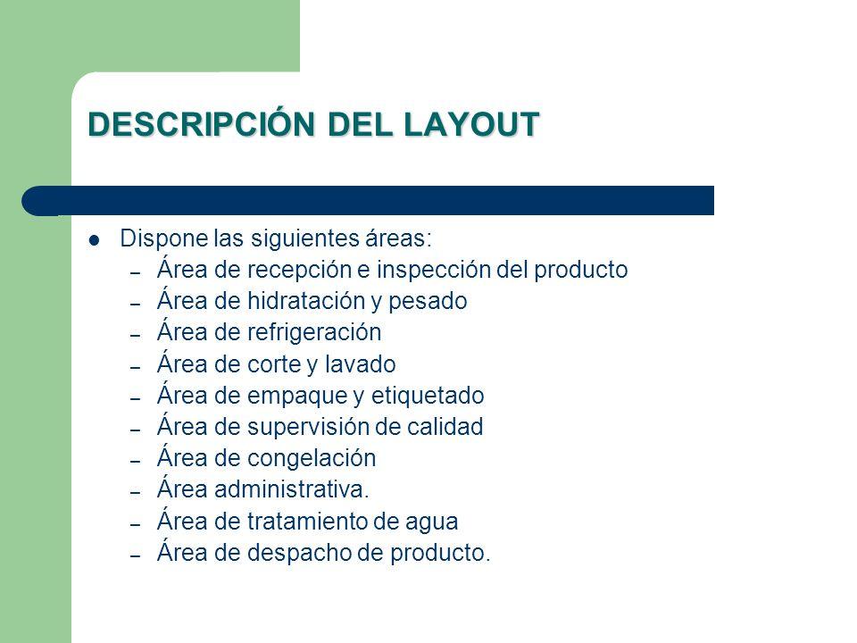 DESCRIPCIÓN DEL LAYOUT Dispone las siguientes áreas: – Área de recepción e inspección del producto – Área de hidratación y pesado – Área de refrigerac