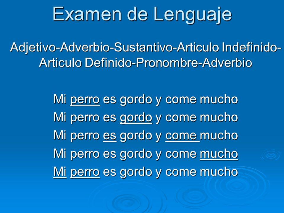 Examen de Lenguaje Adjetivo-Adverbio-Sustantivo-Articulo Indefinido- Articulo Definido-Pronombre-Adverbio Mi perro es gordo y come mucho
