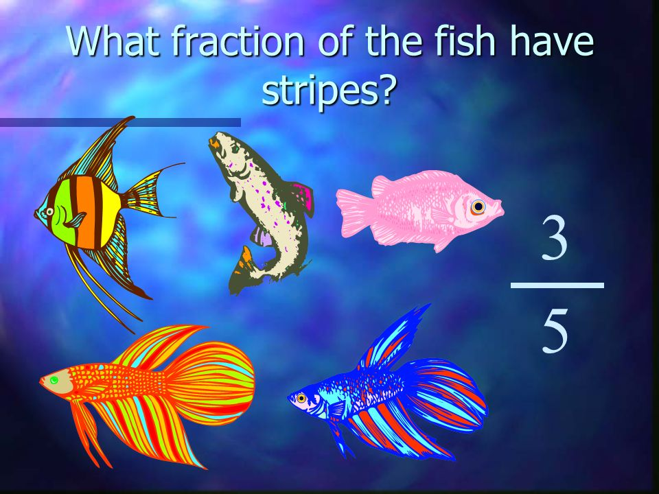 What fraction of the fish have stripes 3 5