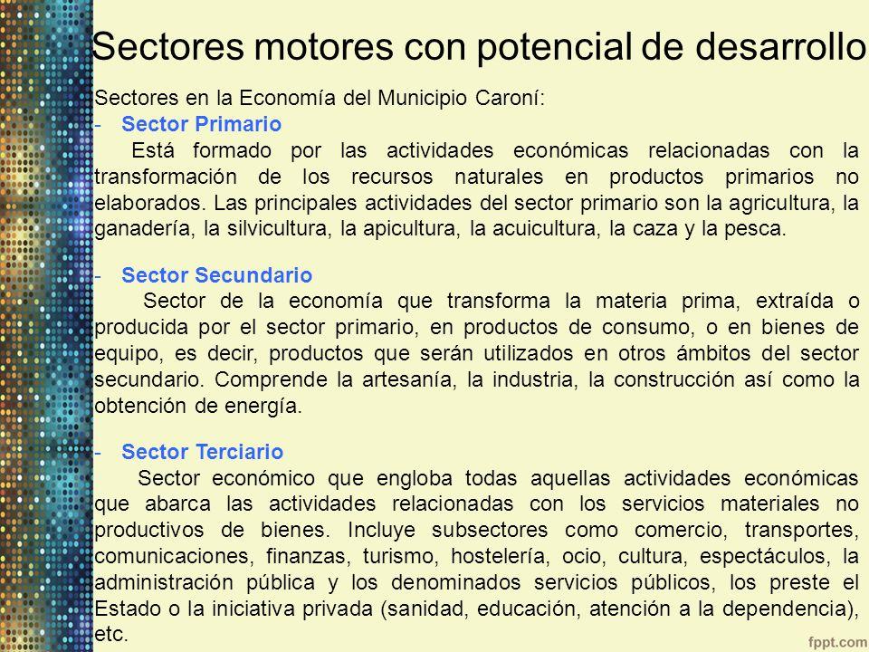 Sectores en la Economía del Municipio Caroní: -Sector Primario Está formado por las actividades económicas relacionadas con la transformación de los r