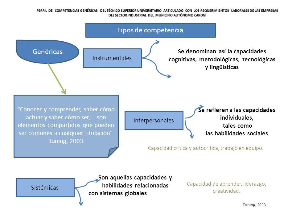 Proceso de aplicación del enfoque de competencias Identificación de competencias Normalización de competencias Formación basada en competencias Certificación de competencias