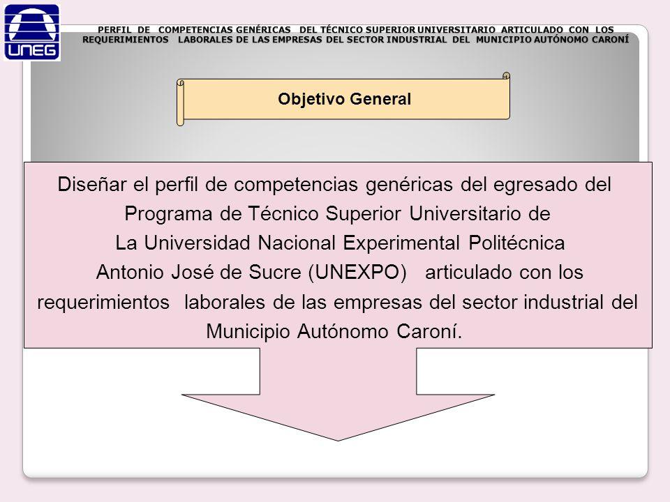 PERFIL DE COMPETENCIAS GENÉRICAS DEL TÉCNICO SUPERIOR UNIVERSITARIO ARTICULADO CON LOS REQUERIMIENTOS LABORALES DE LAS EMPRESAS DEL SECTOR INDUSTRIAL DEL MUNICIPIO AUTÓNOMO CARONÍ Analizar el perfil del T.S.U.