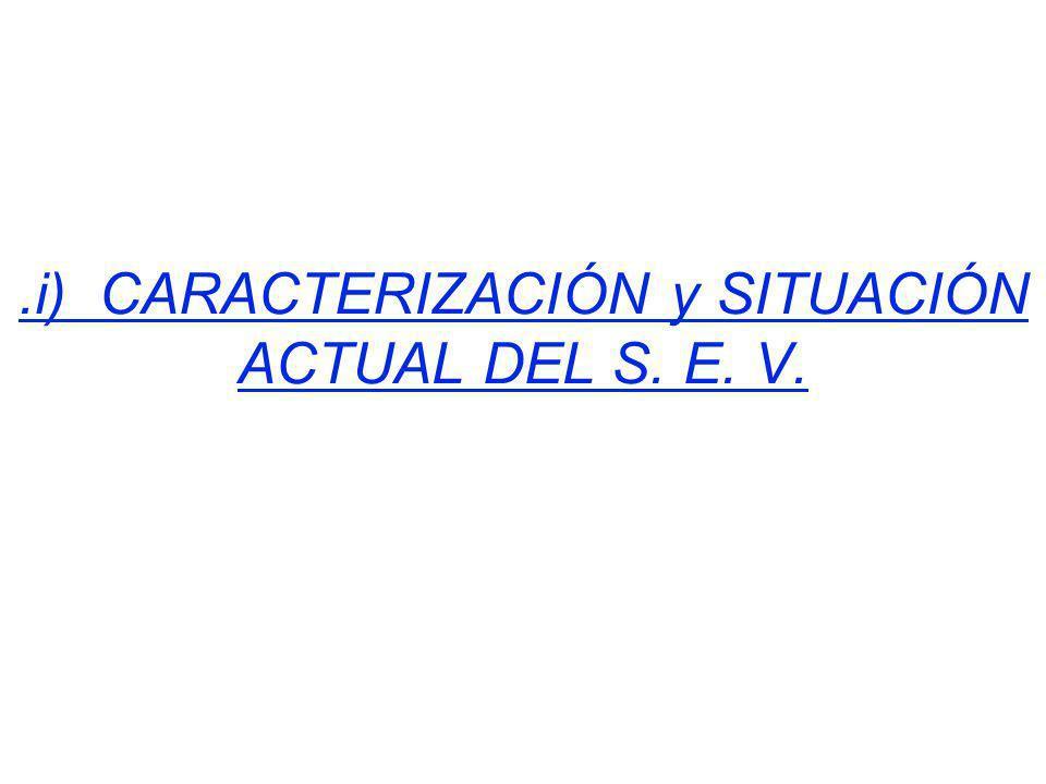 .iii) PLAN MAESTRO PARA EL RESCATE DEL S.E.V