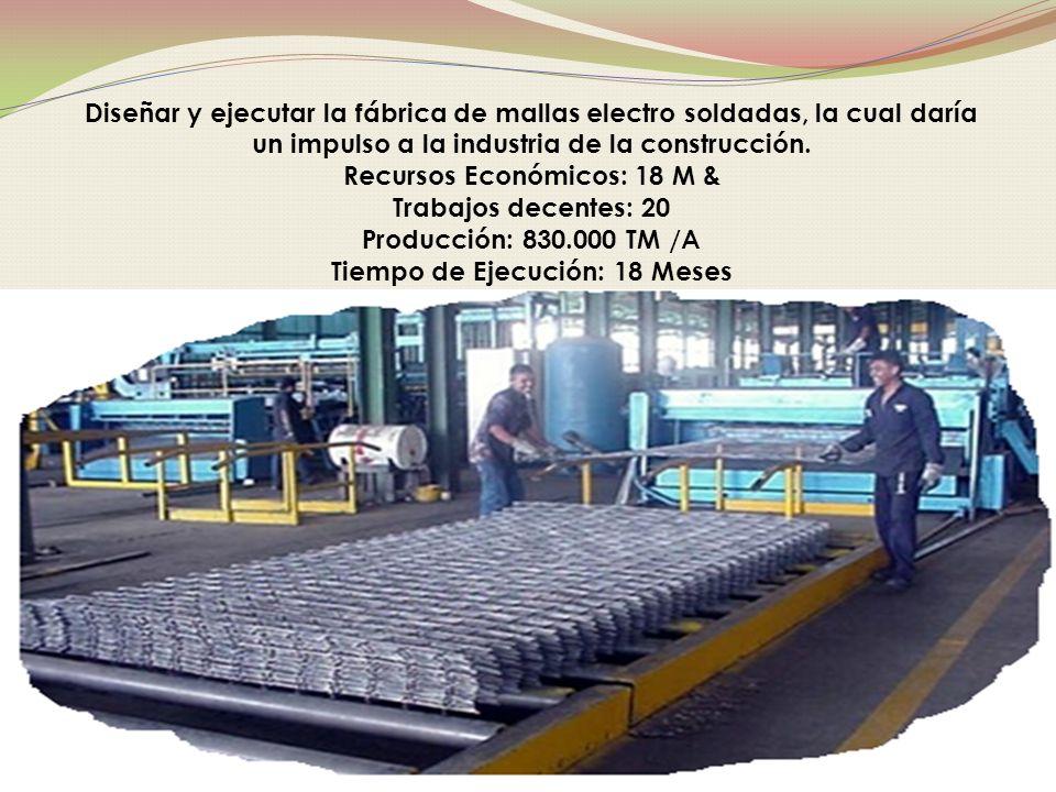 Diseñar y ejecutar la fábrica de mallas electro soldadas, la cual daría un impulso a la industria de la construcción.