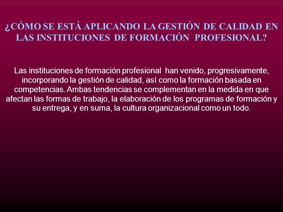 ¿ CÓMO SE ESTÁ APLICANDO LA GESTIÓN DE CALIDAD EN LAS INSTITUCIONES DE FORMACIÓN PROFESIONAL? Las instituciones de formación profesional han venido, p