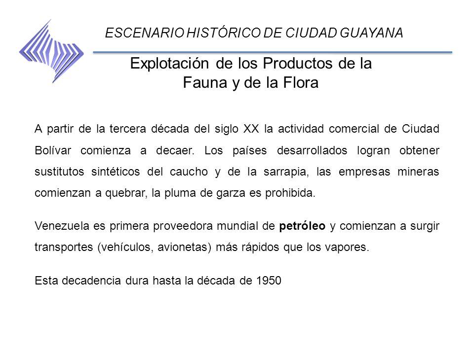 Explotación de los Productos de la Fauna y de la Flora ESCENARIO HISTÓRICO DE CIUDAD GUAYANA A partir de la tercera década del siglo XX la actividad c