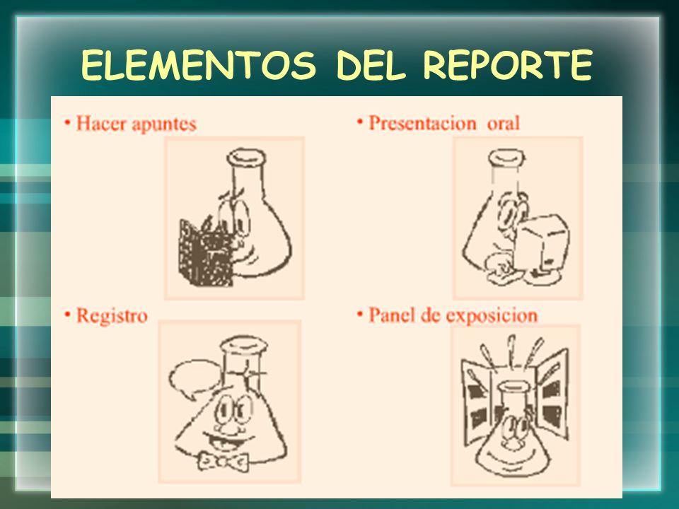 ELEMENTOS DEL REPORTE