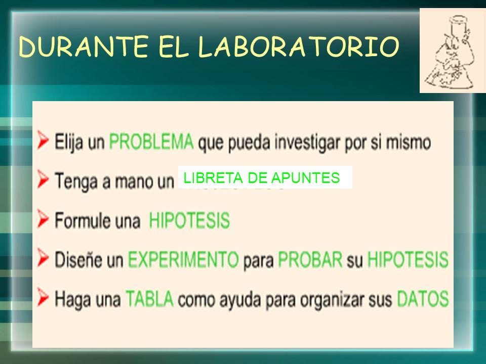 DURANTE EL LABORATORIO LIBRETA DE APUNTES