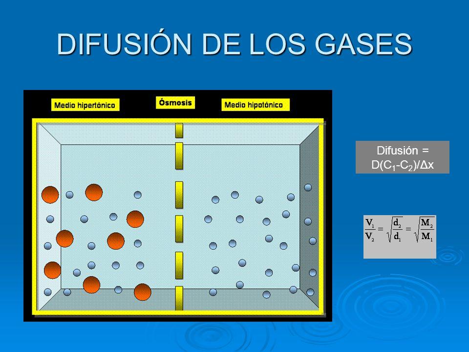 DIFUSIÓN DE LOS GASES Difusión = D(C 1 -C 2 )/Δx