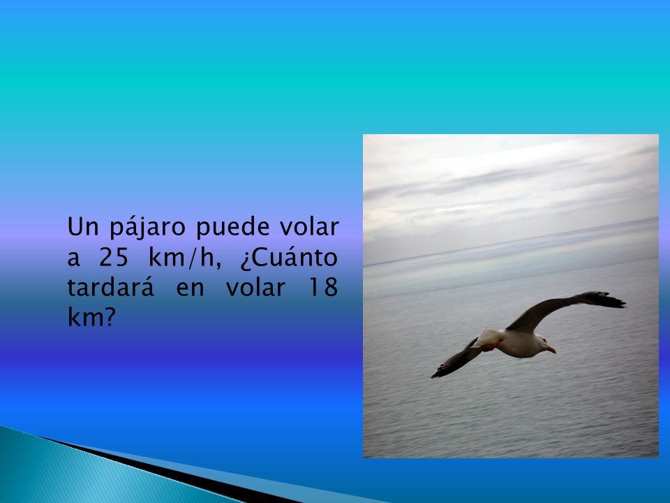 Un pájaro puede volar a 25 km/h, ¿Cuánto tardará en volar 18 km?