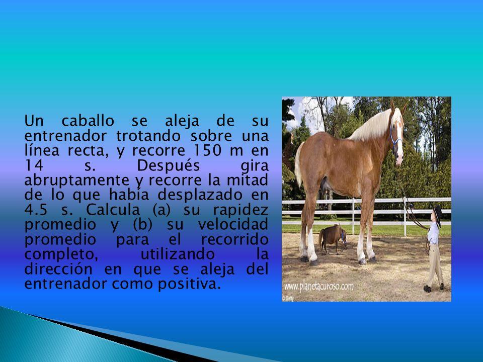 Un caballo se aleja de su entrenador trotando sobre una línea recta, y recorre 150 m en 14 s. Después gira abruptamente y recorre la mitad de lo que h