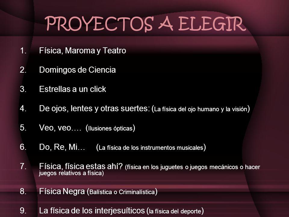 PROYECTOS A ELEGIR 10.Física por todas partes (Física en las calles de Puebla, Rally) 11.