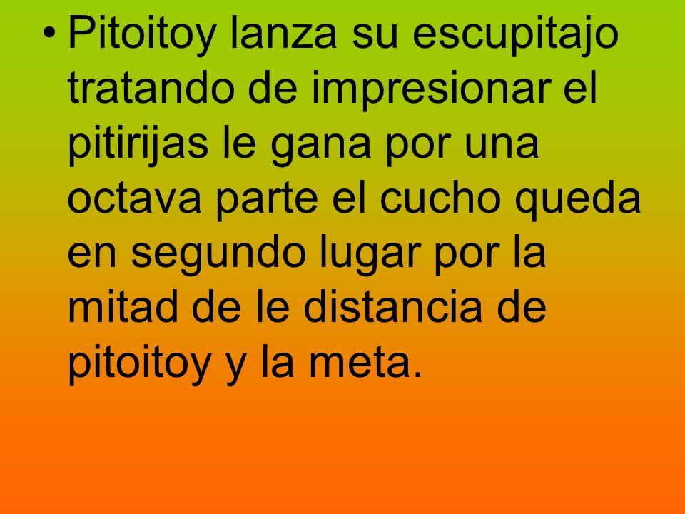 Pitoitoy lanza su escupitajo tratando de impresionar el pitirijas le gana por una octava parte el cucho queda en segundo lugar por la mitad de le distancia de pitoitoy y la meta.