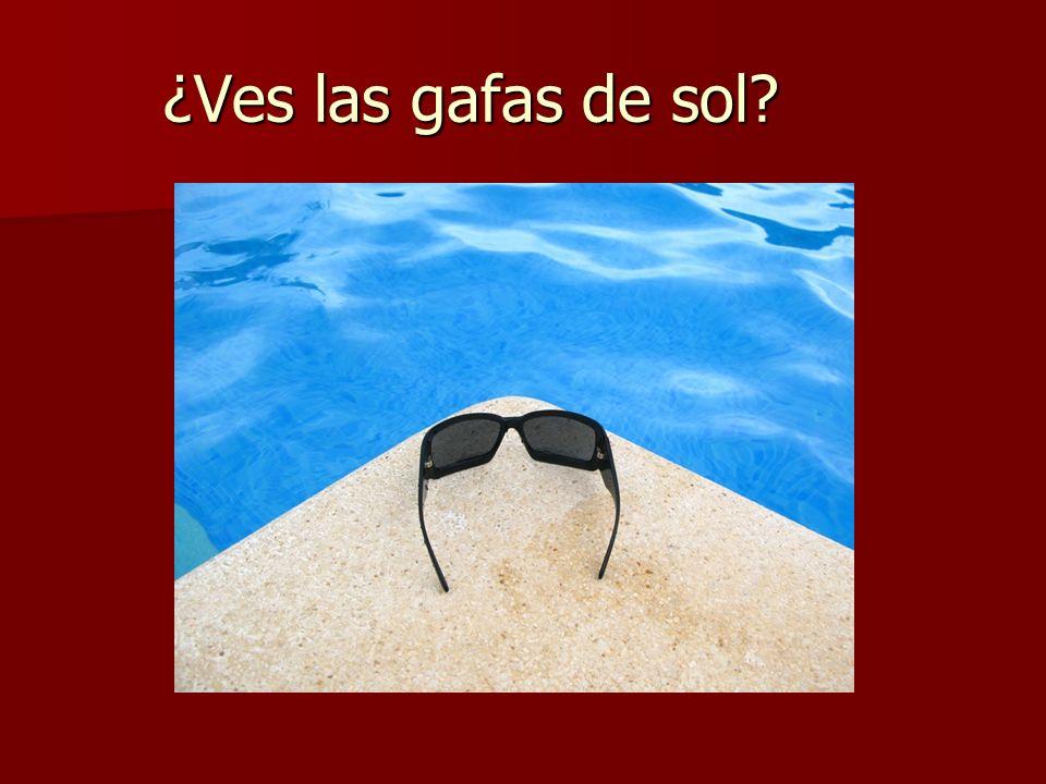 ¿Ves las gafas de sol?