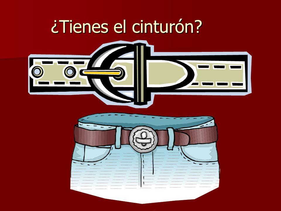 ¿Tienes el cinturón?