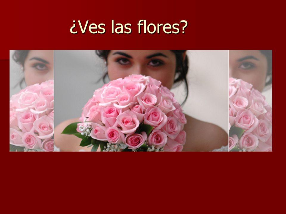 ¿Ves las flores?