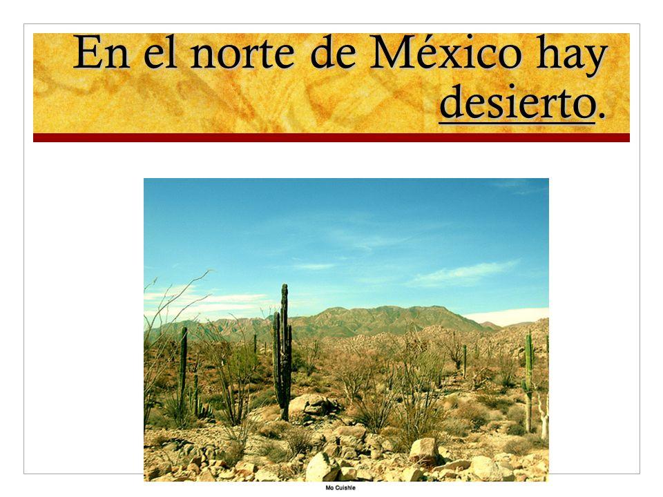 En el norte de México hay desierto.