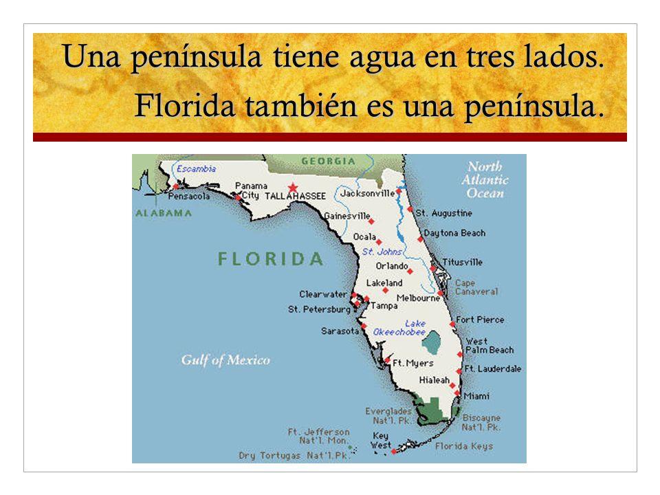 Una península tiene agua en tres lados. Florida también es una península.