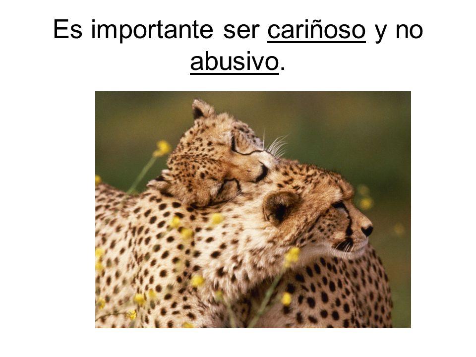 Es importante ser cariñoso y no abusivo.