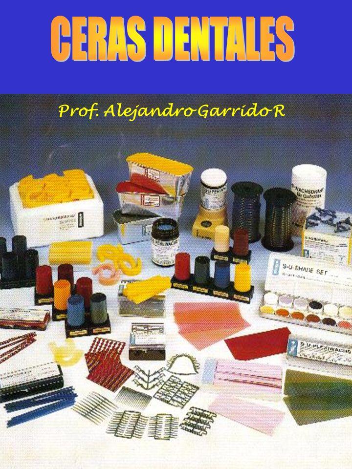 Prof. Alejandro Garrido R