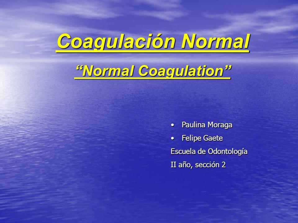 Coagulación Normal Normal Coagulation Paulina MoragaPaulina Moraga Felipe GaeteFelipe Gaete Escuela de Odontología II año, sección 2