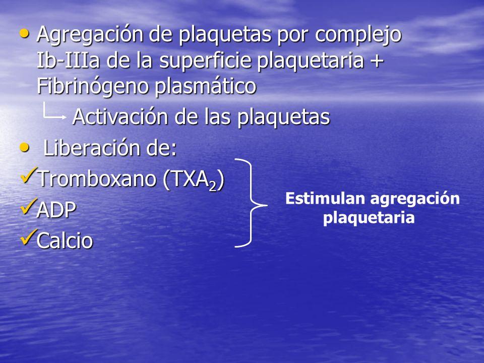 Agregación de plaquetas por complejo Ib-IIIa de la superficie plaquetaria + Fibrinógeno plasmático Agregación de plaquetas por complejo Ib-IIIa de la