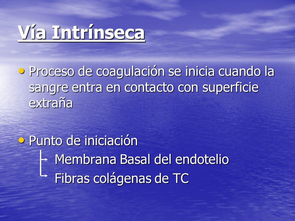 Vía Intrínseca Proceso de coagulación se inicia cuando la sangre entra en contacto con superficie extraña Proceso de coagulación se inicia cuando la s