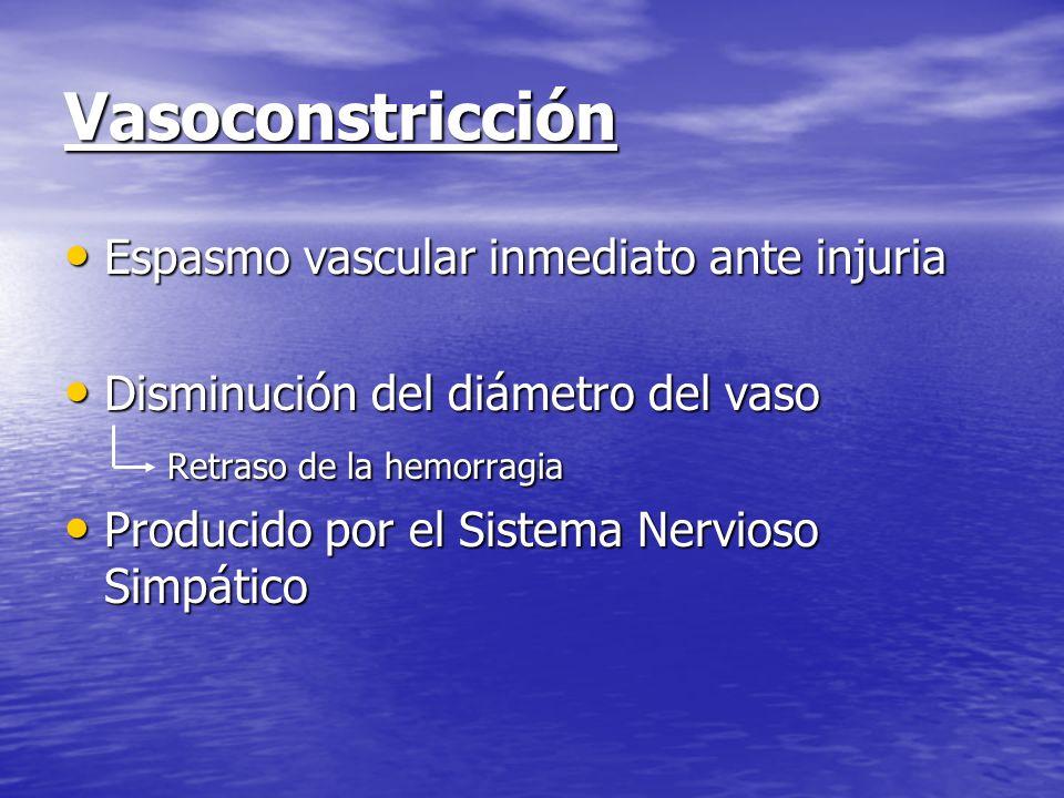 Vasoconstricción Espasmo vascular inmediato ante injuria Espasmo vascular inmediato ante injuria Disminución del diámetro del vaso Disminución del diá