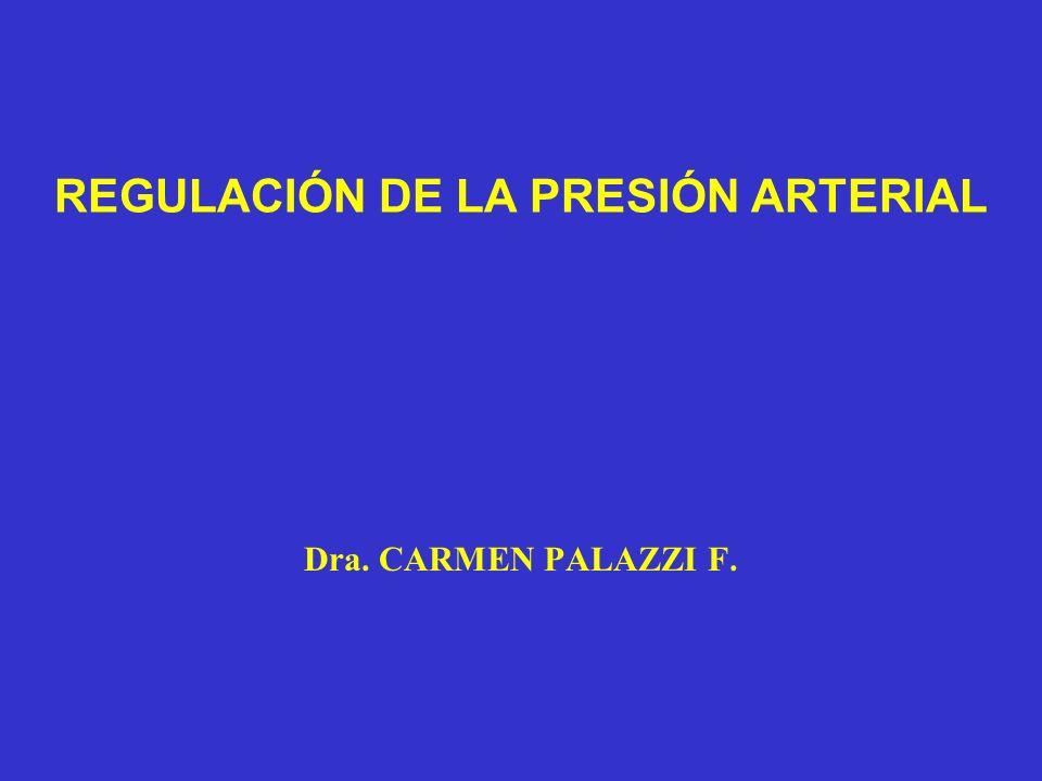 REGULACIÓN DE LA PRESIÓN ARTERIAL Dra. CARMEN PALAZZI F.