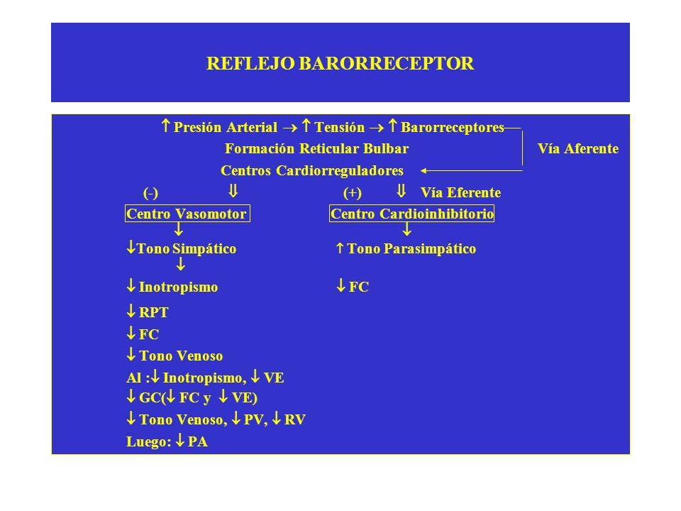 REFLEJO BARORRECEPTOR Presión Arterial Tensión Barorreceptores Formación Reticular Bulbar Vía Aferente Centros Cardiorreguladores (-) (+) Vía Eferente