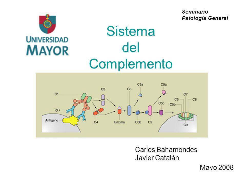 Sistema del Complemento Carlos Bahamondes Javier Catalán Mayo 2008 Seminario Patología General