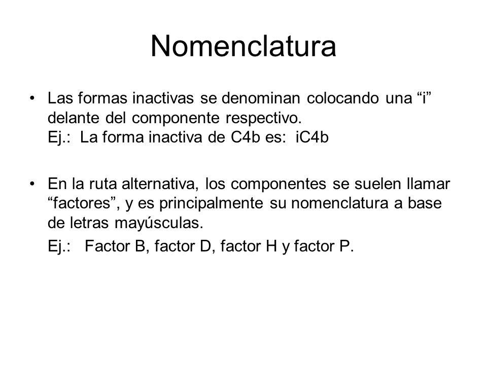 Nomenclatura Las formas inactivas se denominan colocando una i delante del componente respectivo. Ej.: La forma inactiva de C4b es: iC4b En la ruta al