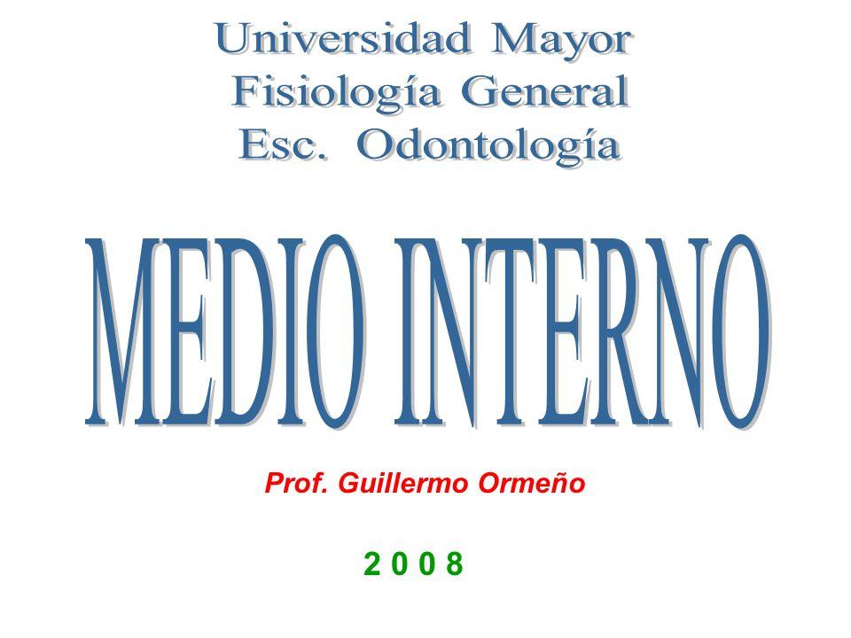 2 0 0 8 Prof. Guillermo Ormeño