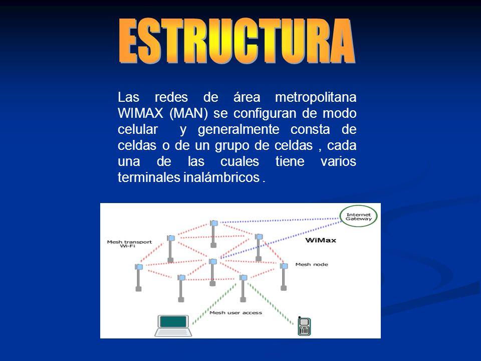 Las redes de área metropolitana WIMAX (MAN) se configuran de modo celular y generalmente consta de celdas o de un grupo de celdas, cada una de las cua