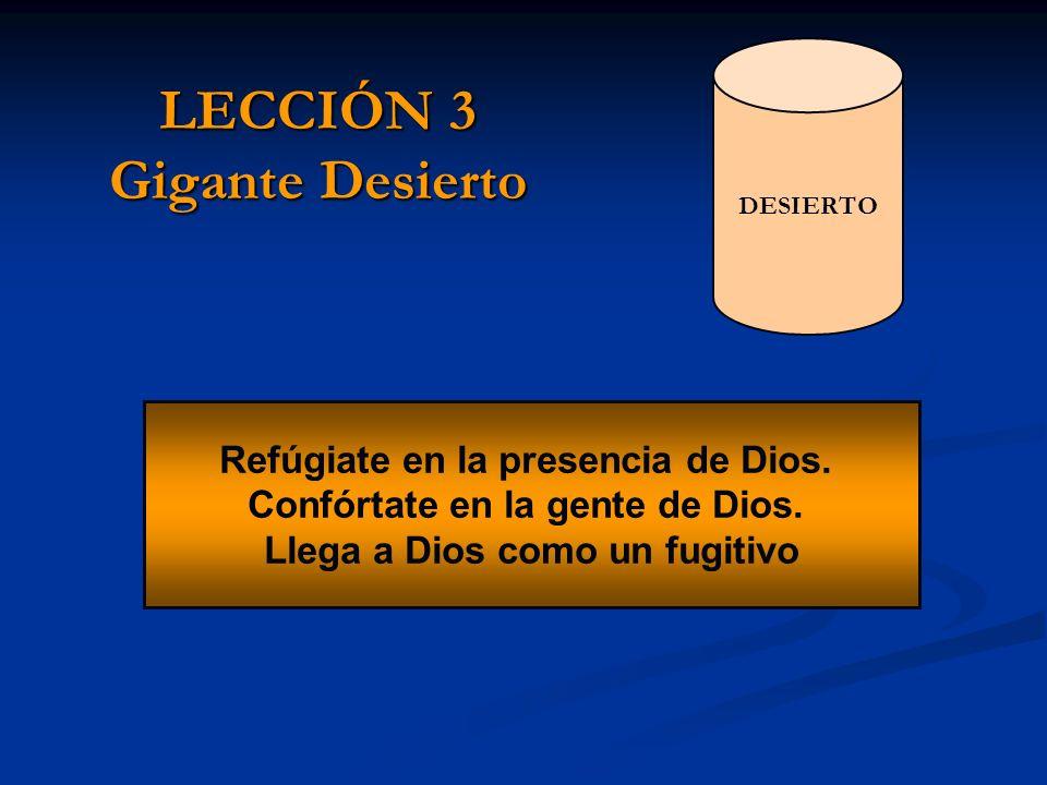 LECCIÓN 3 Gigante Desierto Refúgiate en la presencia de Dios. Confórtate en la gente de Dios. Llega a Dios como un fugitivo DESIERTO