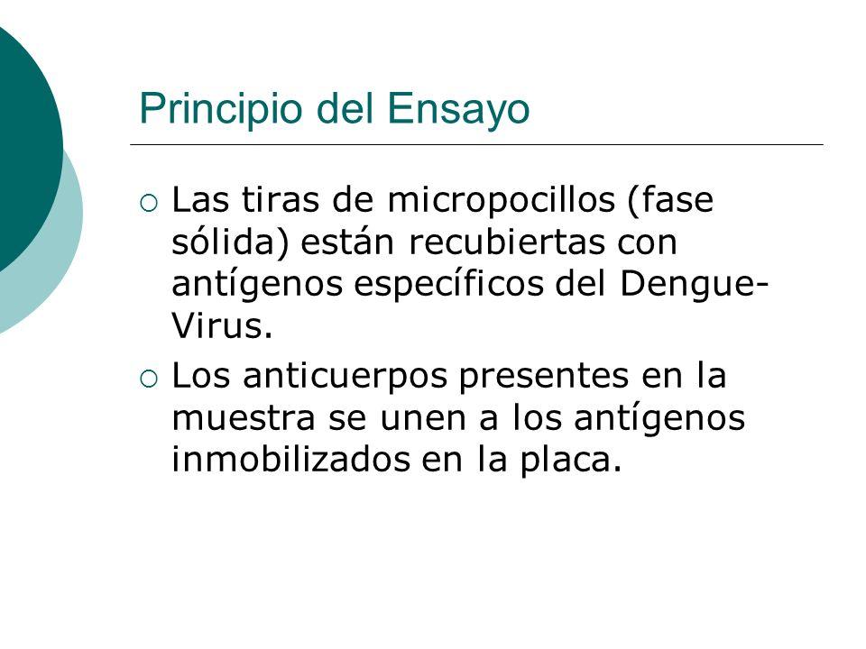 Principio del Ensayo Las tiras de micropocillos (fase sólida) están recubiertas con antígenos específicos del Dengue- Virus. Los anticuerpos presentes