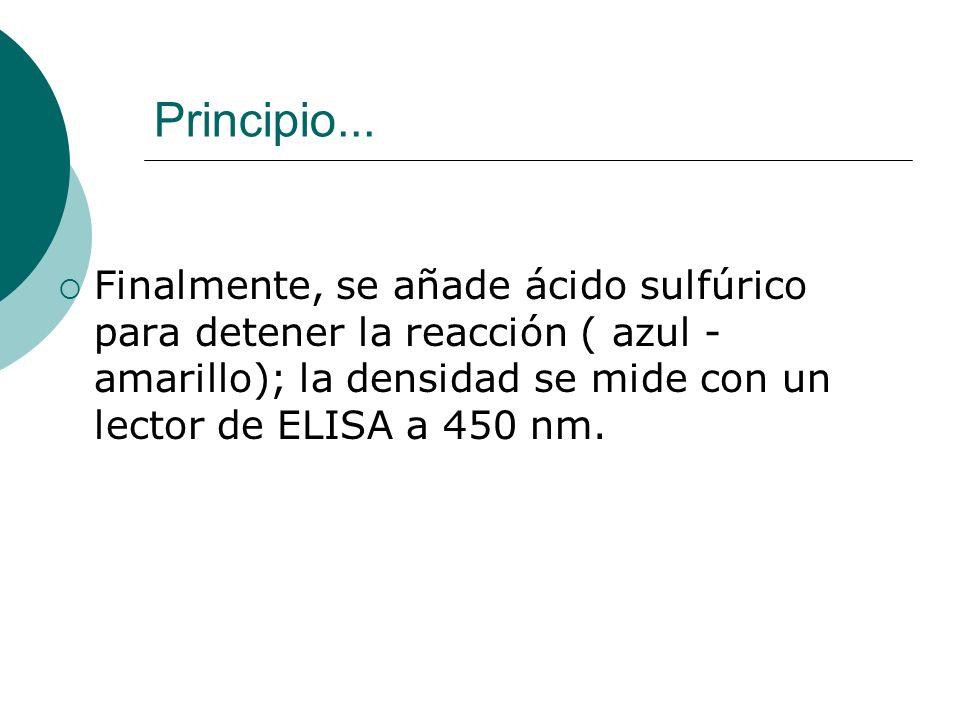 Principio... Finalmente, se añade ácido sulfúrico para detener la reacción ( azul - amarillo); la densidad se mide con un lector de ELISA a 450 nm.
