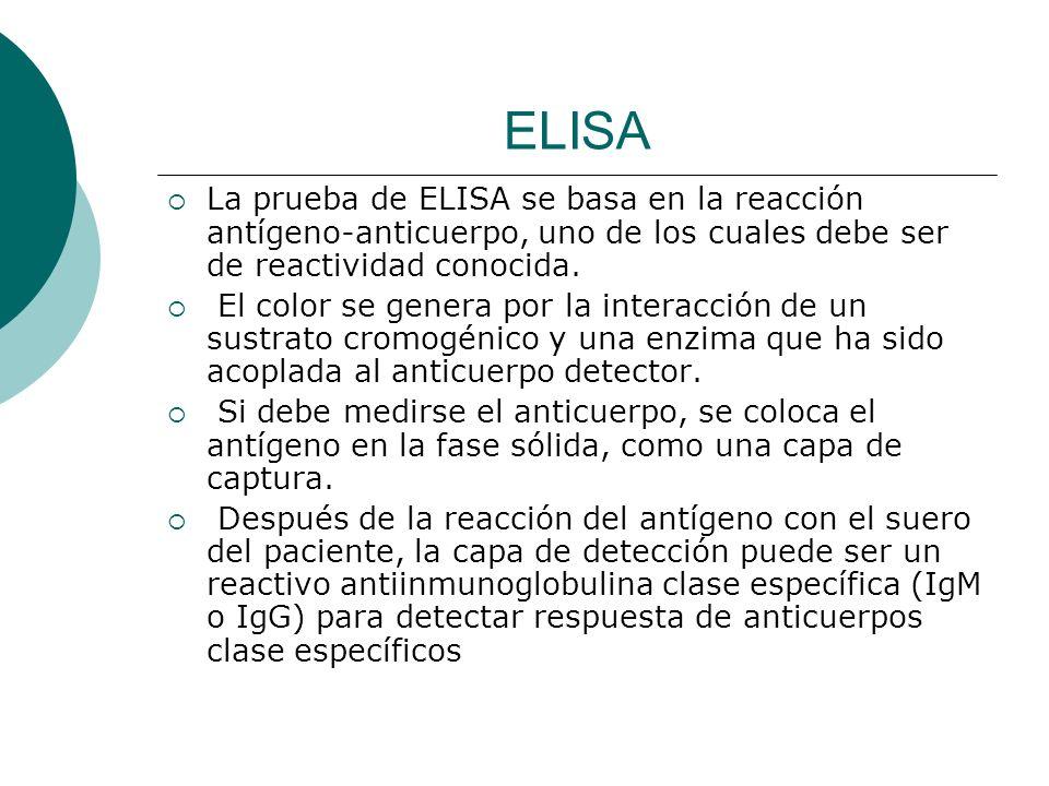 ELISA La prueba de ELISA se basa en la reacción antígeno-anticuerpo, uno de los cuales debe ser de reactividad conocida. El color se genera por la int