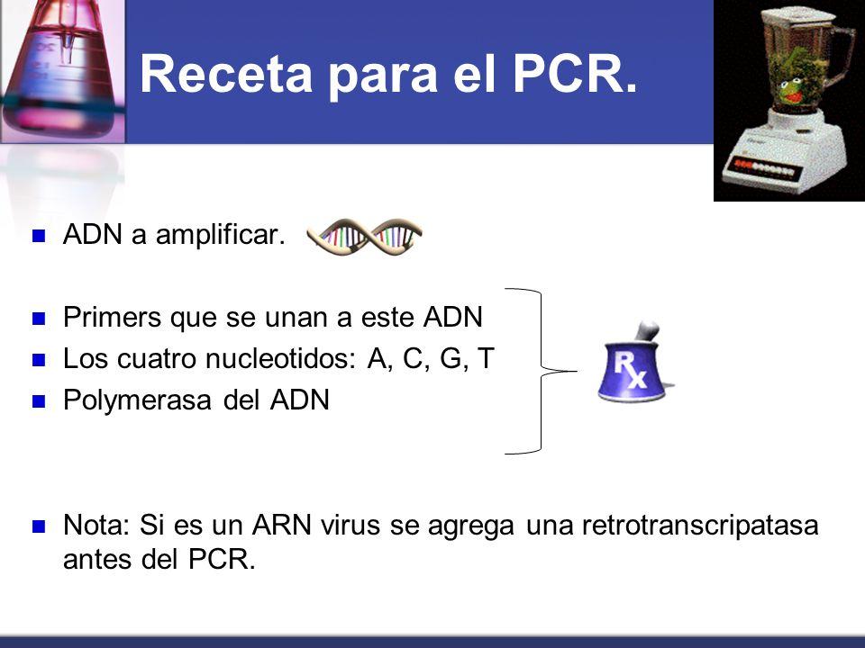 Receta para el PCR. ADN a amplificar. Primers que se unan a este ADN Los cuatro nucleotidos: A, C, G, T Polymerasa del ADN Nota: Si es un ARN virus se