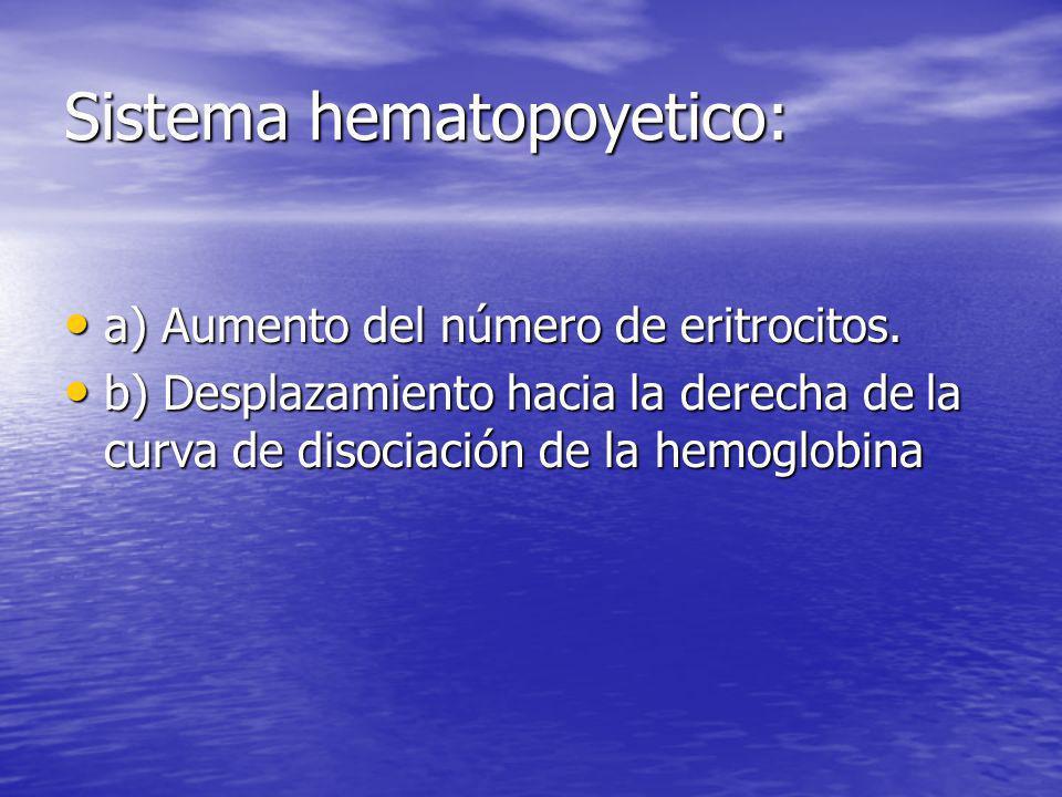 Sistema hematopoyetico: a) Aumento del número de eritrocitos. a) Aumento del número de eritrocitos. b) Desplazamiento hacia la derecha de la curva de