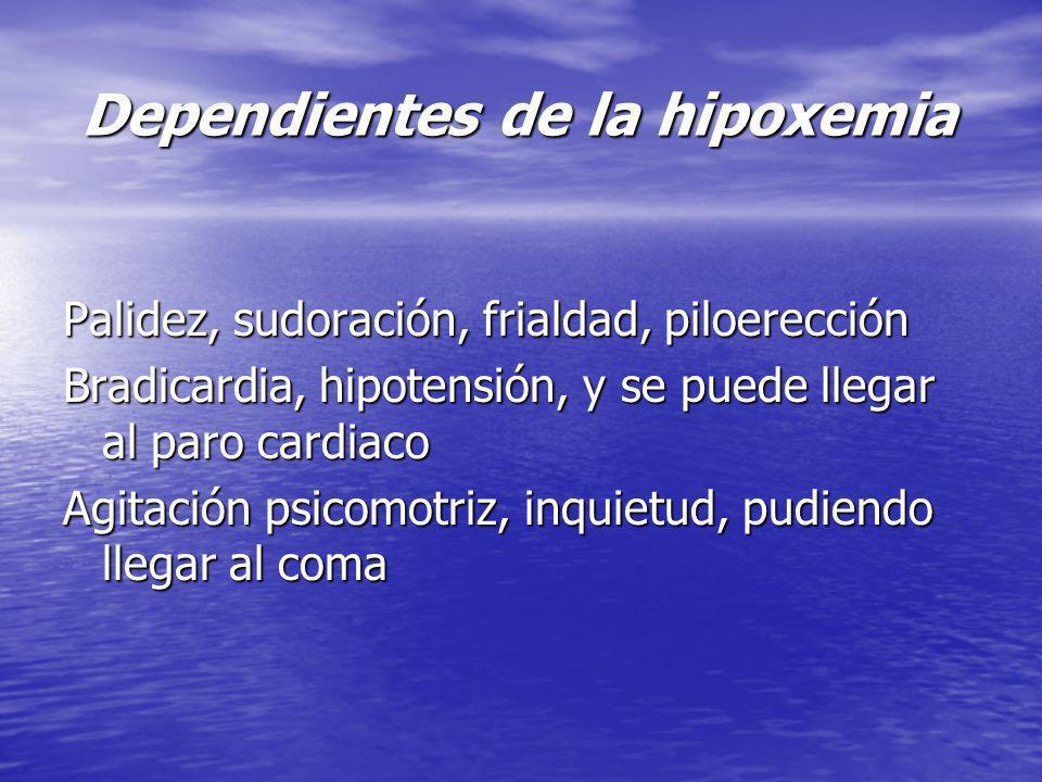 Dependientes de la hipoxemia Dependientes de la hipoxemia Palidez, sudoración, frialdad, piloerección Bradicardia, hipotensión, y se puede llegar al p