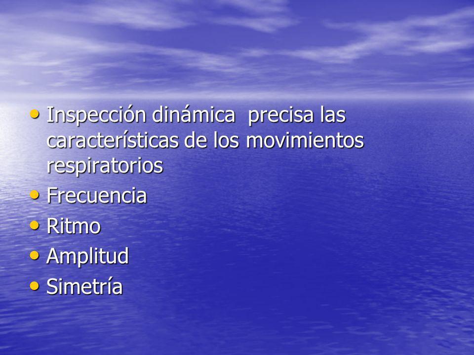 Inspección dinámica precisa las características de los movimientos respiratorios Inspección dinámica precisa las características de los movimientos re