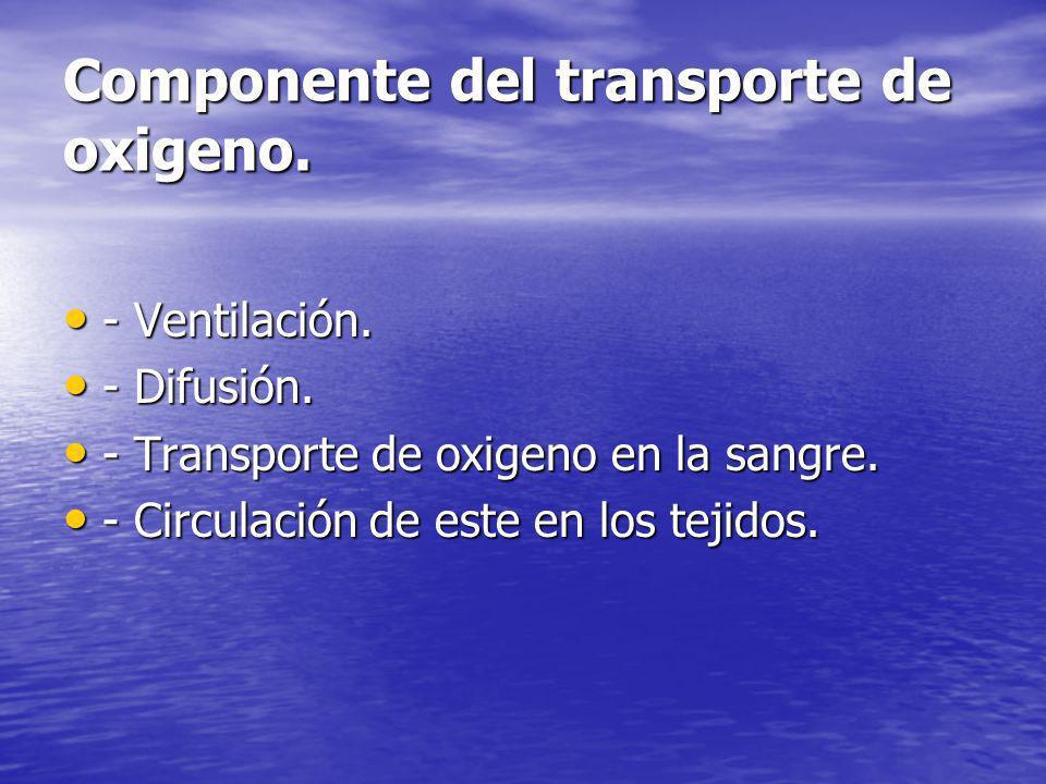 Componente del transporte de oxigeno. - Ventilación. - Ventilación. - Difusión. - Difusión. - Transporte de oxigeno en la sangre. - Transporte de oxig