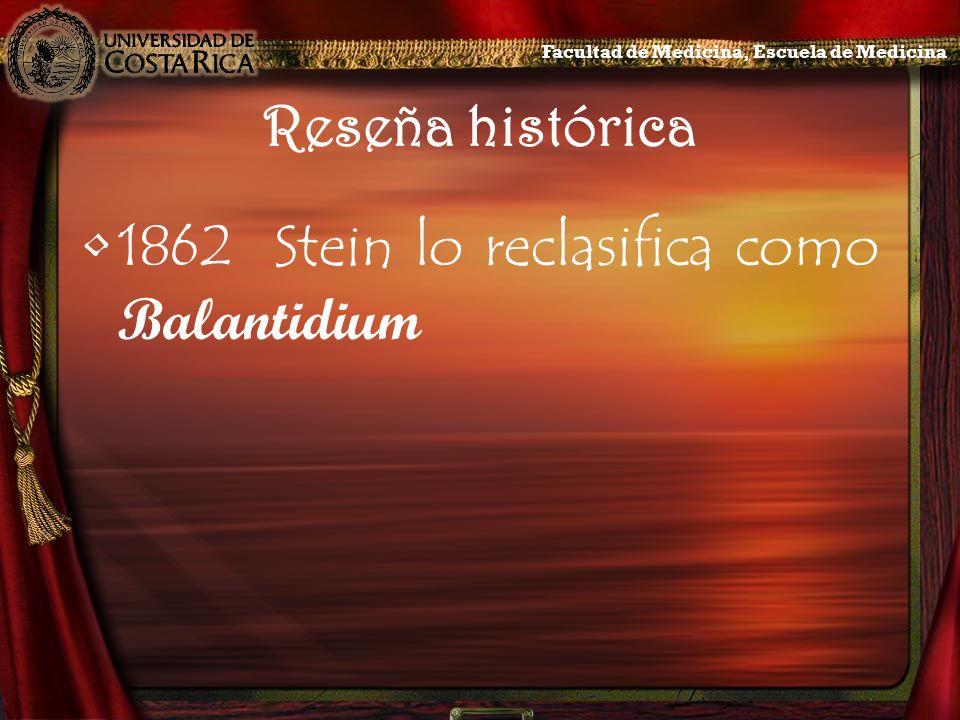 Reseña histórica 1862Stein lo reclasifica como Balantidium Facultad de Medicina, Escuela de Medicina
