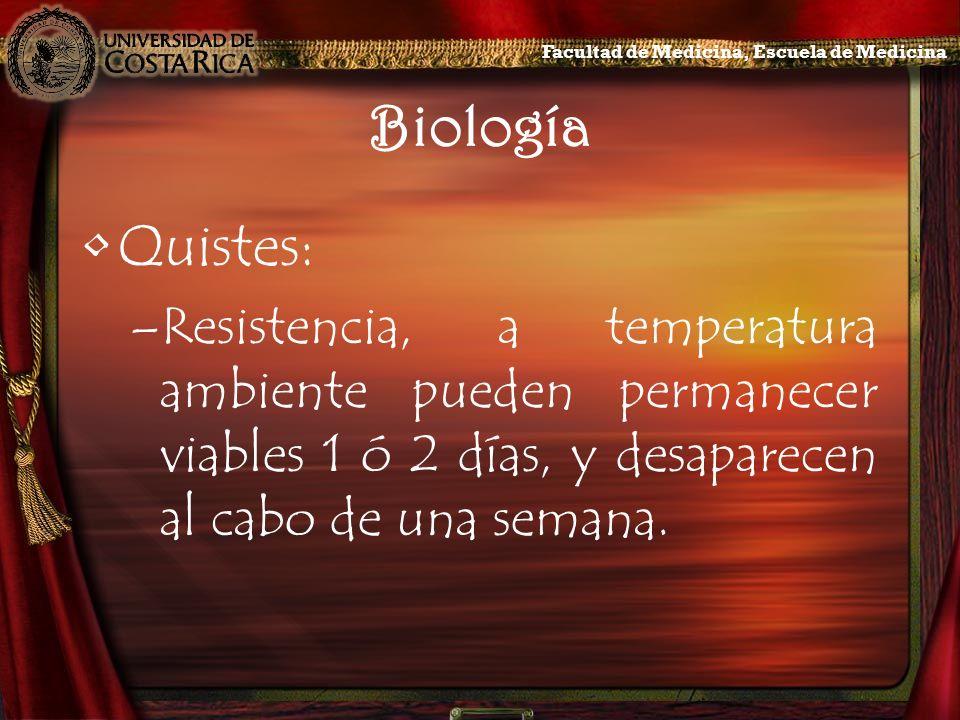 Biología Quistes: –Resistencia, a temperatura ambiente pueden permanecer viables 1 ó 2 días, y desaparecen al cabo de una semana. Facultad de Medicina